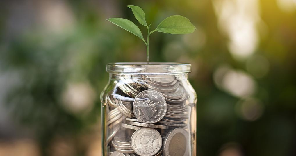Jar of coins with plant inside