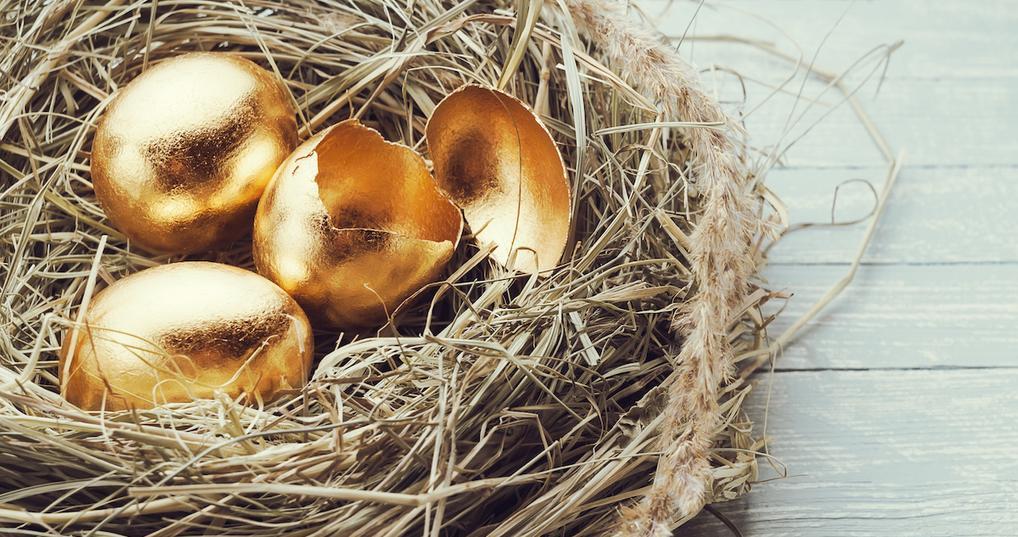 Broken retirement nest egg