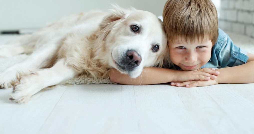 Happy dog and little boy