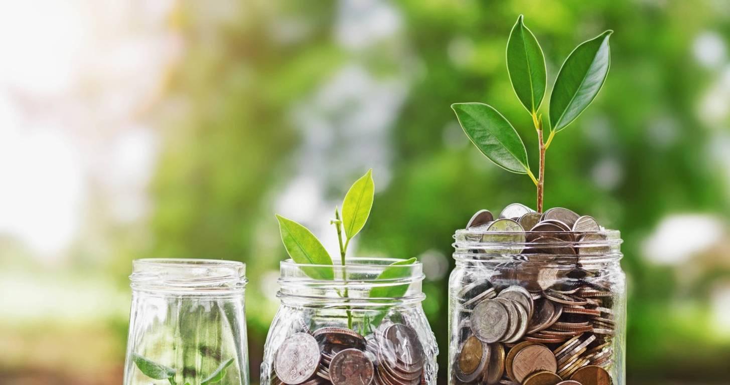 money growing savings account