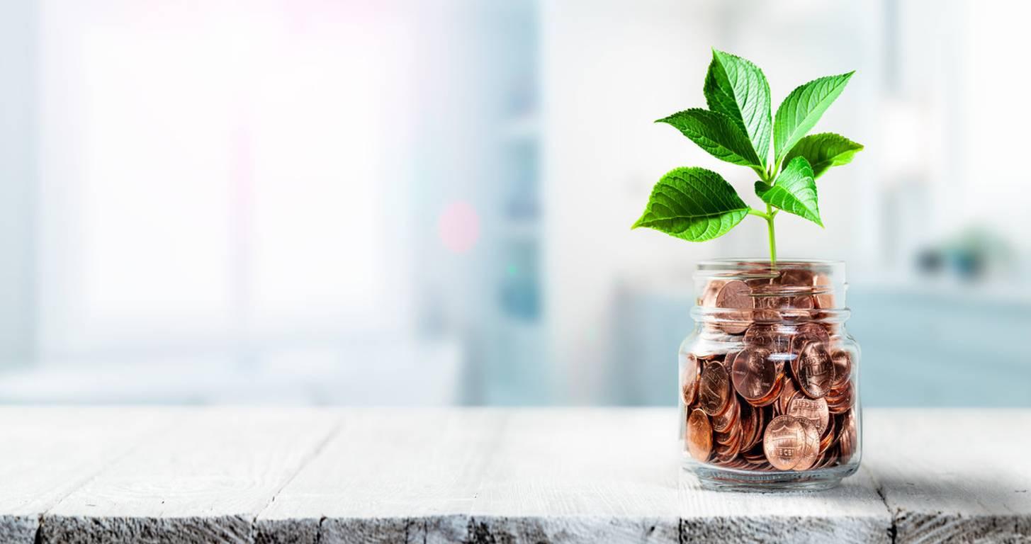 money growing in a jar