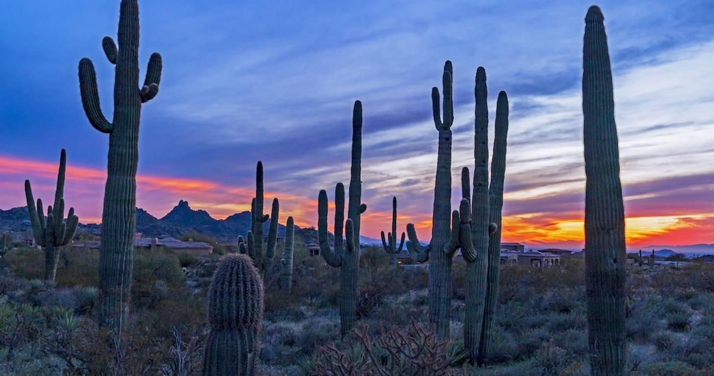 North Scottsdale, Arizona