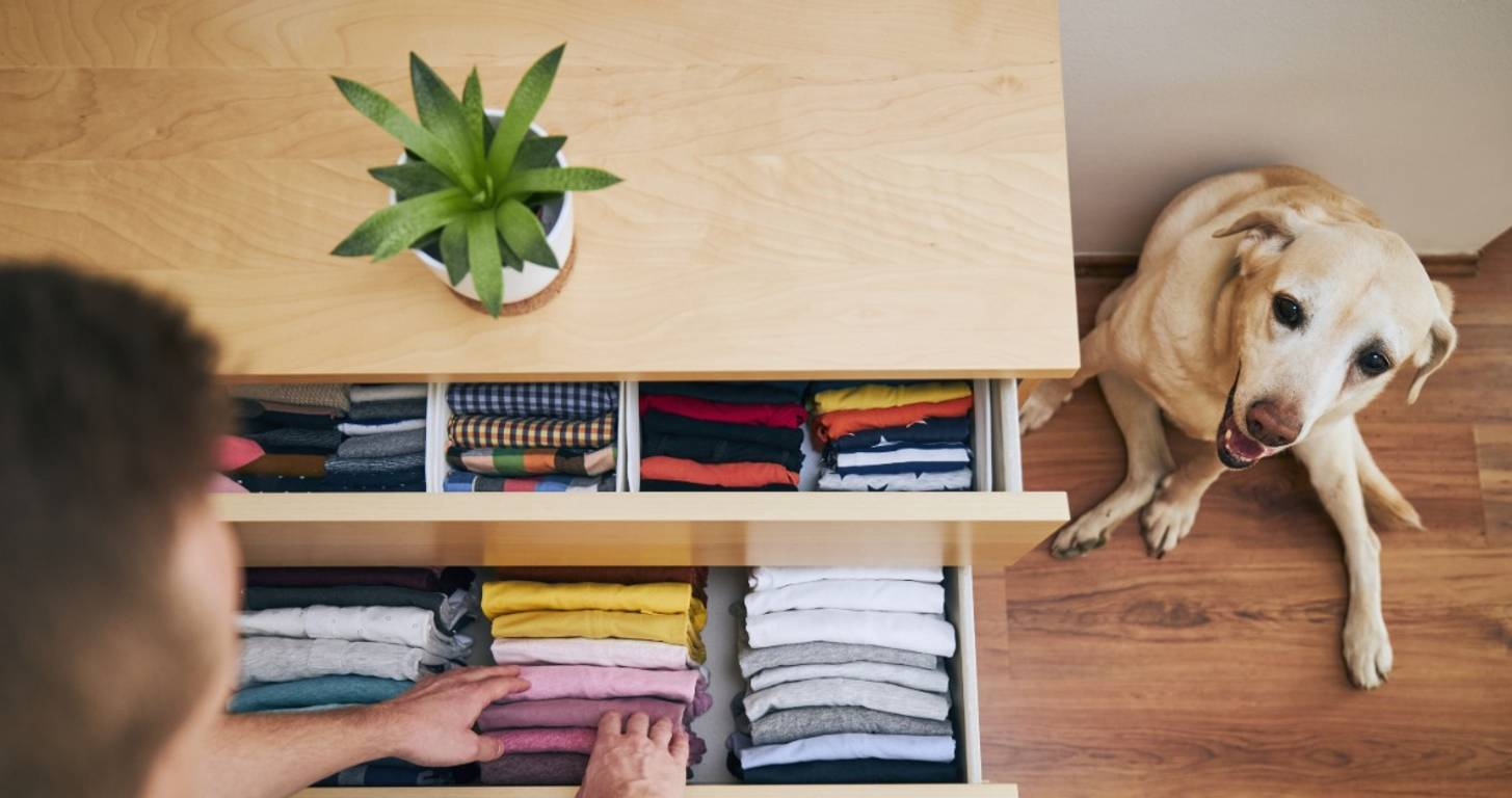 man organizing home with dog