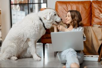 remote worker with dog and laptop