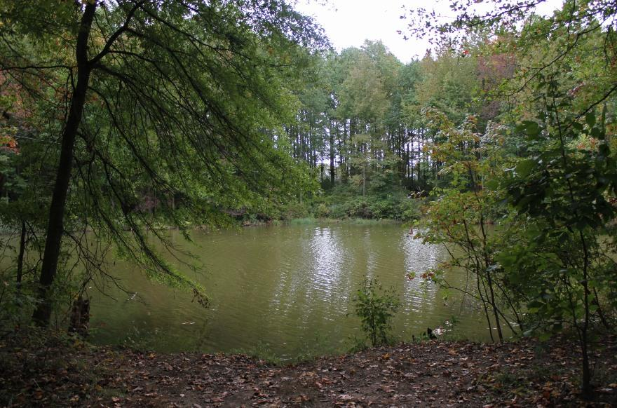 Delaware: Lums Pond State Park