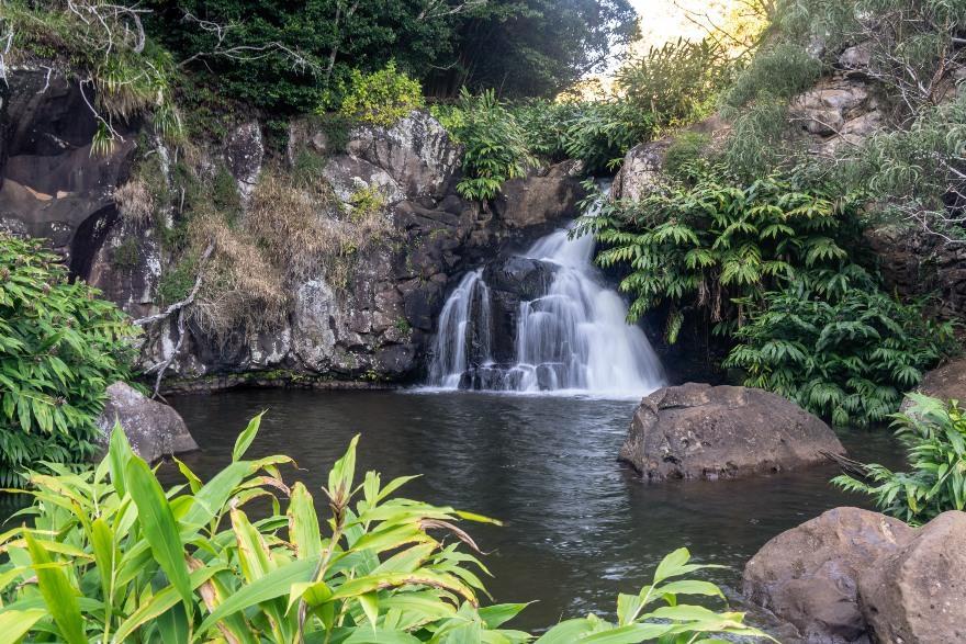 Hawaii: Kokee State Park